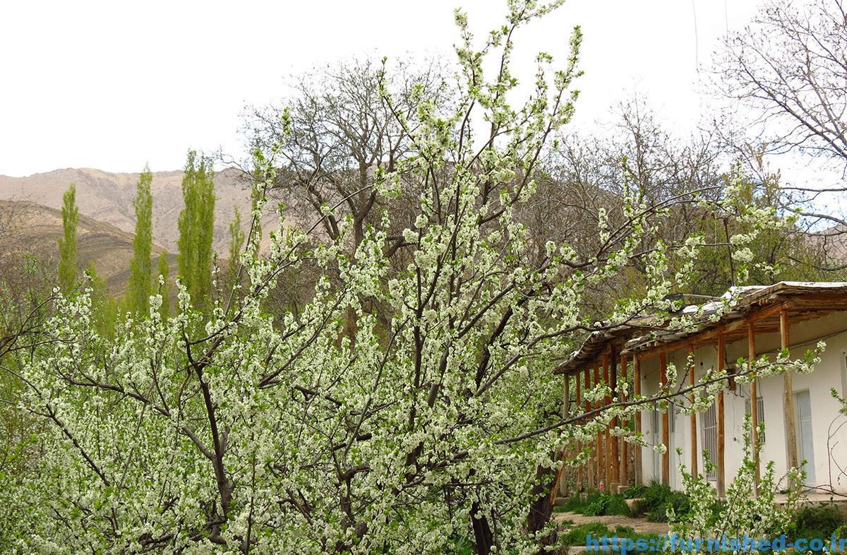 اجاره خانه باغ در همدان